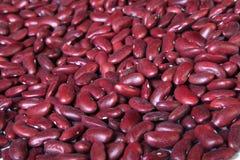 Κόκκινα φασόλια νεφρών Στοκ φωτογραφίες με δικαίωμα ελεύθερης χρήσης
