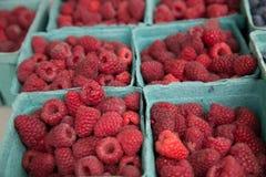 Κόκκινα φρέσκα εμπορευματοκιβώτια εγγράφου rasberries Στοκ φωτογραφία με δικαίωμα ελεύθερης χρήσης