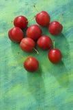 Κόκκινα φρούτα δαμάσκηνων κορόμηλων πέρα από το χρωματισμένο υφαντικό υπόβαθρο Στοκ φωτογραφίες με δικαίωμα ελεύθερης χρήσης