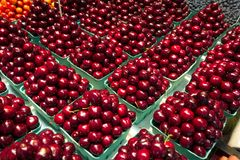 Κόκκινα φρούτα κερασιών Στοκ φωτογραφίες με δικαίωμα ελεύθερης χρήσης