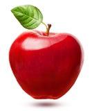Κόκκινα φρούτα μήλων με το φύλλο Στοκ Εικόνες