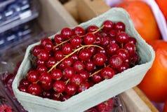 Κόκκινα φρούτα μούρων στην αγροτική αγορά Στοκ Φωτογραφία