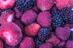 Κόκκινα φρούτα Στοκ Φωτογραφία
