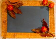 Κόκκινα φύλλα και εσπεριδοειδή λεμονιών Στοκ Εικόνες
