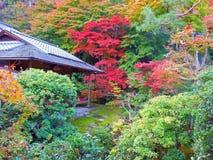 Κόκκινα φύλλα στο Κιότο στοκ φωτογραφία με δικαίωμα ελεύθερης χρήσης