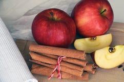 Κόκκινα χαριτωμένα μήλα και ραβδιά κανέλας τρόφιμα υγιή Στοκ εικόνες με δικαίωμα ελεύθερης χρήσης