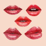 Κόκκινα χείλια καθορισμένα Στοκ Εικόνες