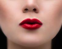 Κόκκινα χείλια ομορφιάς Στοκ εικόνες με δικαίωμα ελεύθερης χρήσης