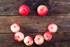 Κόκκινα ώριμα μήλα Στοκ φωτογραφία με δικαίωμα ελεύθερης χρήσης