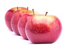 Κόκκινα ώριμα μήλα Στοκ εικόνα με δικαίωμα ελεύθερης χρήσης