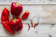 Κόκκινα chilis και πιπέρια Στοκ Φωτογραφία