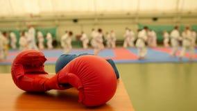 Κόκκινα karate γάντια στο tatami κατά τη διάρκεια της κατάρτισης, de-στραμμένης απόθεμα βίντεο