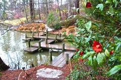 Κόκκινες ανθίσεις με μια άποψη Στοκ φωτογραφίες με δικαίωμα ελεύθερης χρήσης