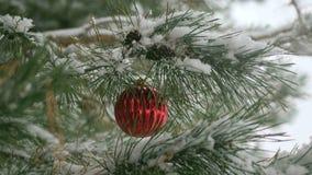Κόκκινες διακοσμήσεις Χριστουγέννων με τους κλάδους πεύκων Στοκ φωτογραφίες με δικαίωμα ελεύθερης χρήσης