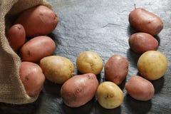 Κόκκινες και άσπρες πατάτες από burlap το σάκο Στοκ Φωτογραφίες