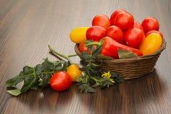 Κόκκινες και κίτρινες ντομάτες σε ένα καλάθι Στοκ Εικόνες