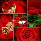 Κόκκινες καρδιές λουλουδιών τριαντάφυλλων κόκκινος αυξήθηκε Στοκ Εικόνα