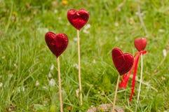 Κόκκινες καρδιές που μένουν στο φρέσκο κήπο χλόης Στοκ εικόνα με δικαίωμα ελεύθερης χρήσης