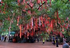 Κόκκινες κορδέλλες στο δέντρο αγάπης Στοκ φωτογραφίες με δικαίωμα ελεύθερης χρήσης