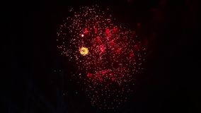 Κόκκινες λάμψεις των πυροτεχνημάτων Ζωηρόχρωμα πυροτεχνήματα στο νυχτερινό ουρανό Πολλές λάμψεις απόθεμα βίντεο