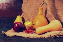 Κόκκινες μήλα, αχλάδι, σορβιά και κολοκύθες που βρίσκονται στο ύφασμα λινού Στοκ Φωτογραφία