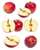 Κόκκινες μήλο και φέτα στο μισό στο άσπρο υπόβαθρο Στοκ εικόνα με δικαίωμα ελεύθερης χρήσης