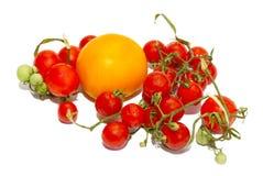 κόκκινες μικρές ντομάτες Στοκ Εικόνες