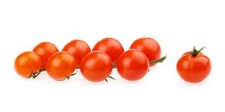 κόκκινες ντομάτες κερασιών Στοκ Φωτογραφίες