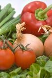 κόκκινες ντομάτες πιπερι Στοκ Φωτογραφία