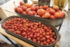 Κόκκινες ντομάτες στην αγορά οργανικής τροφής για την πώληση στοκ εικόνα με δικαίωμα ελεύθερης χρήσης