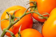 Κόκκινες ντομάτες στο ξύλο Στοκ Φωτογραφίες