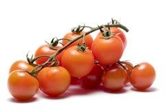 κόκκινες ντομάτες Στοκ Εικόνες