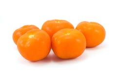 κόκκινες ντομάτες Στοκ φωτογραφίες με δικαίωμα ελεύθερης χρήσης