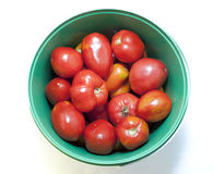 κόκκινες ντομάτες Στοκ Εικόνα