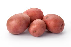 Πατάτες που απομονώνονται κόκκινες Στοκ Εικόνες