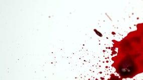 Κόκκινες πτώσεις απόθεμα βίντεο
