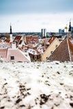 κόκκινες στέγες Ταλίν Στοκ Φωτογραφία