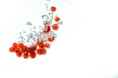 Κόκκινες σταφίδες σε ένα νερό Στοκ φωτογραφία με δικαίωμα ελεύθερης χρήσης