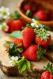 Κόκκινες υγιείς φράουλες την άνοιξη Στοκ Εικόνες
