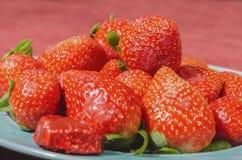 Κόκκινες φράουλες βαλεντίνων στο μπλε πιάτο κιρκιριών με τη λειωμένη πικρή σοκολάτα στοκ εικόνες