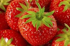 κόκκινες φράουλες δεσ&m Στοκ Εικόνες
