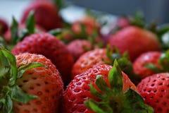 κόκκινες φράουλες στοκ φωτογραφίες