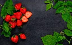 Κόκκινες φράουλες και πράσινα φύλλα Στοκ Εικόνες
