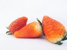 κόκκινες φράουλες Στοκ φωτογραφίες με δικαίωμα ελεύθερης χρήσης