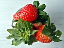 κόκκινες φράουλες Στοκ εικόνες με δικαίωμα ελεύθερης χρήσης