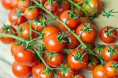 Κόκκινες ώριμες ντομάτες κερασιών Στοκ Φωτογραφία