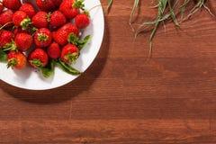 κόκκινες ώριμες φράουλες στοκ εικόνες