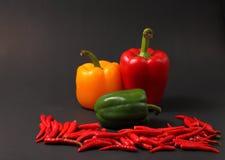 Κόκκινες chillis και πάπρικες Στοκ φωτογραφία με δικαίωμα ελεύθερης χρήσης