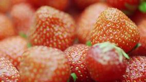 Κόκκινες juicy φράουλες, περιστροφή Βίντεο με το ρηχό βάθος του τομέα απόθεμα βίντεο