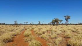 Κόκκινη άμμος ερήμων τοπίων της Αυστραλίας εσωτερικών και ξηρά ξηρά λιβάδια απόθεμα βίντεο